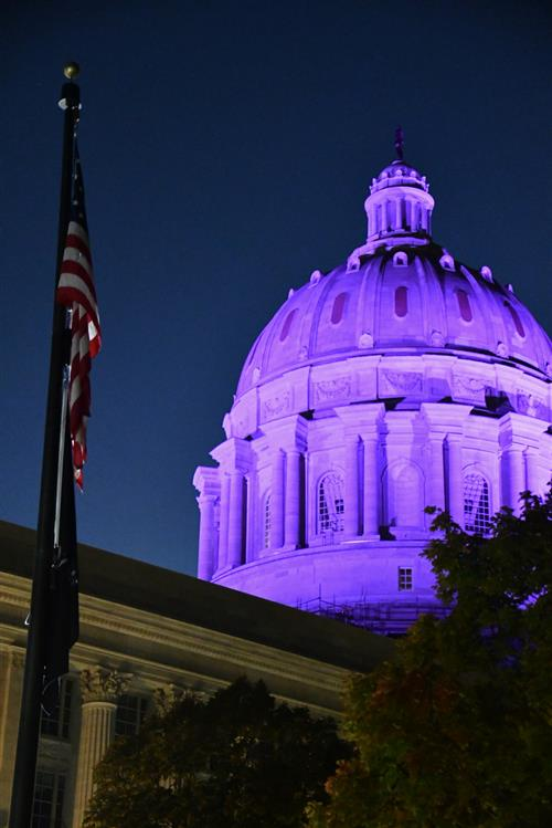 Missouri Capitol lit up in purple