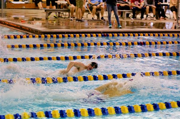 Swimmer headed to state;  SW championship results