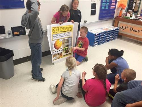 East second graders study lifecycles