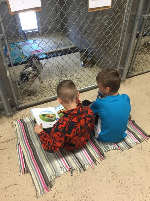East students read to dogs
