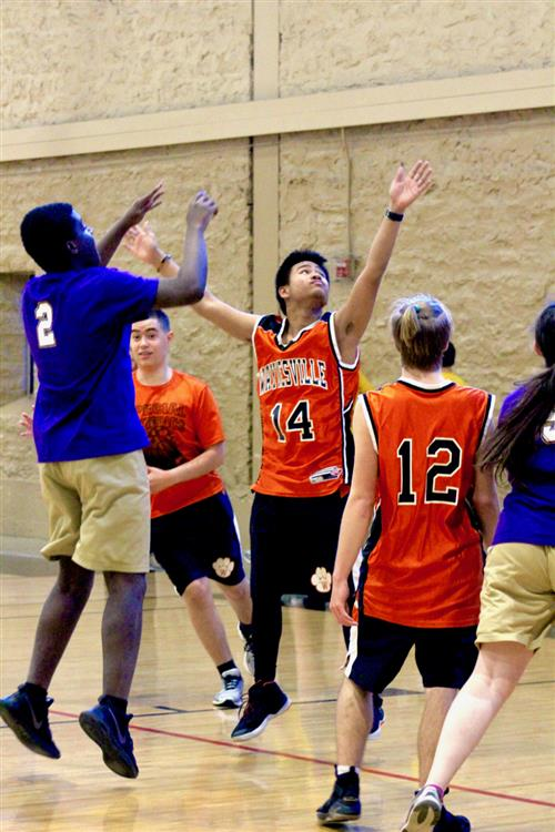 Waynesville takes gold in Special Olympics